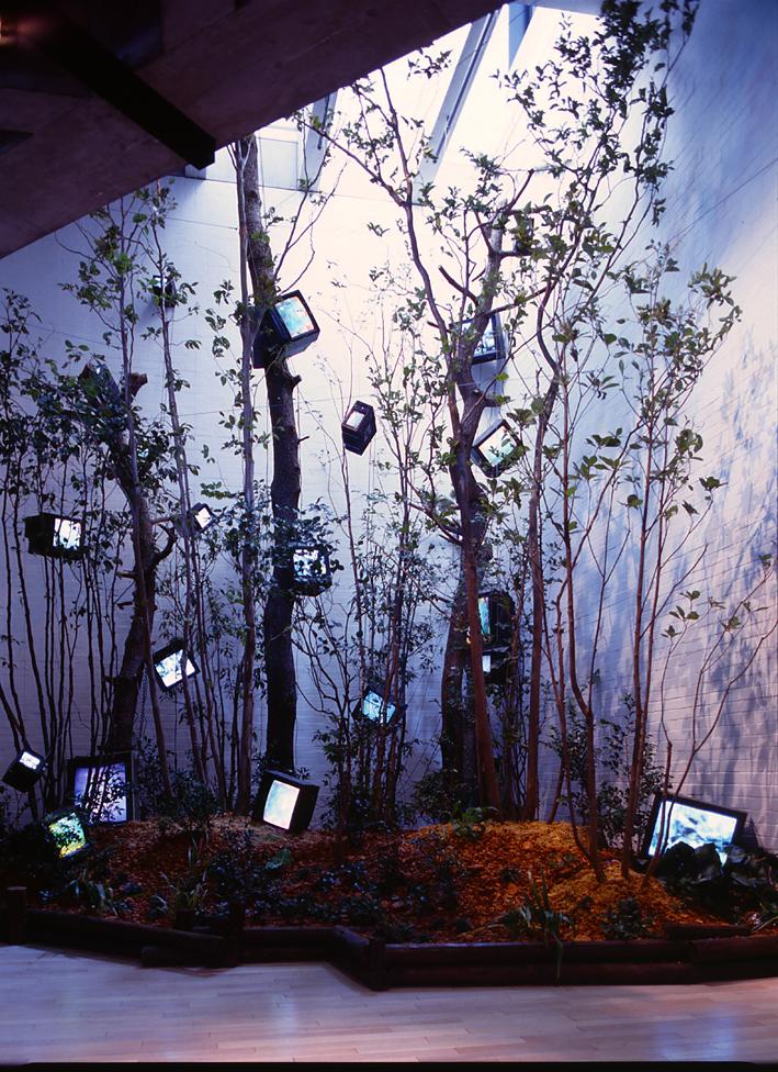 「ケージの森/森の啓示」1993